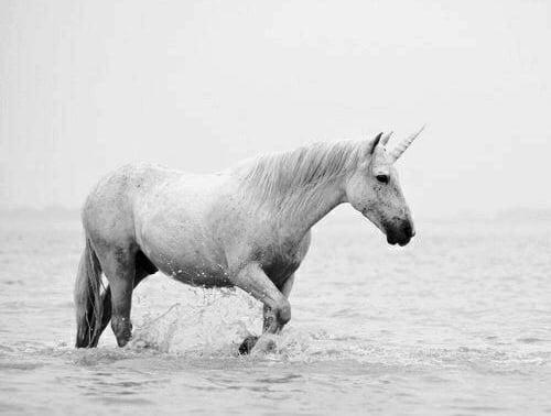 mitolojik yaratiklar - unicorn